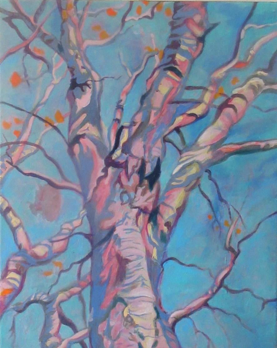 Silvery Birch - Claudette Losier
