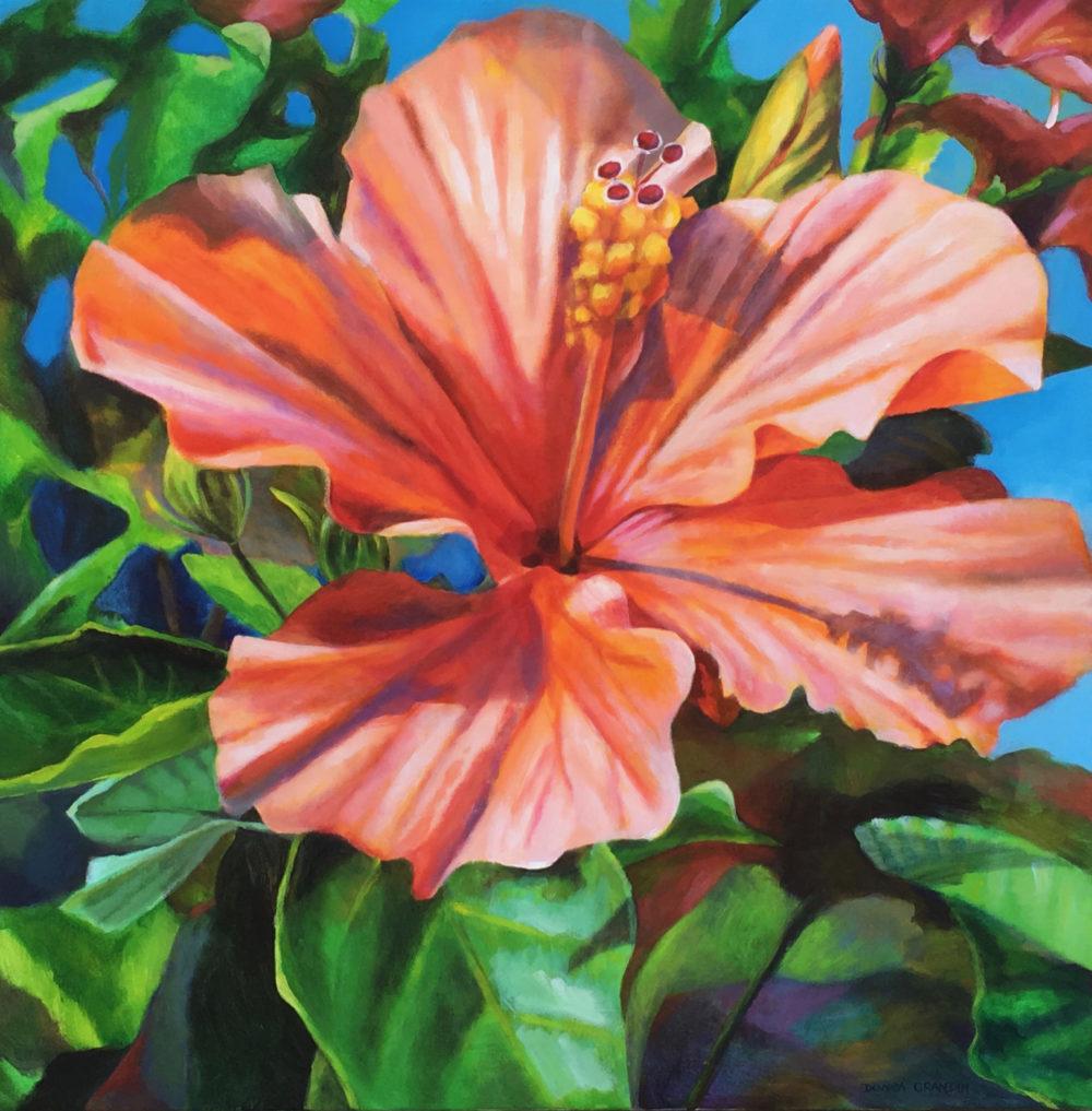 Hibiscus Beauty - Donna Grandin