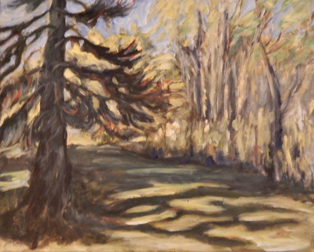Pine At Lowville - Lois Crawford