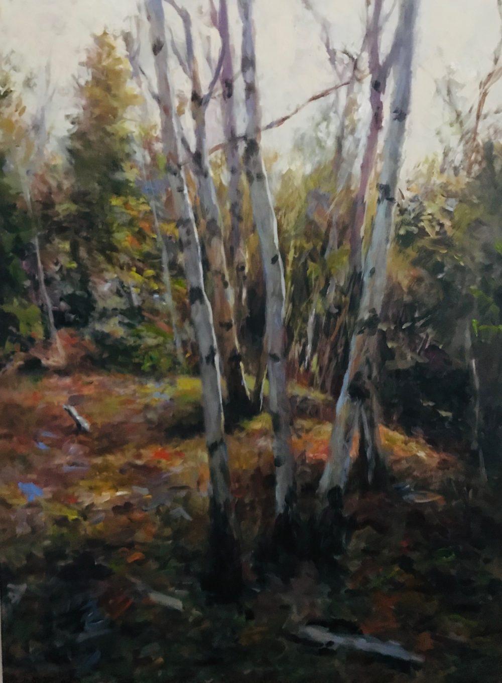 Birchgrove - Fall - Douglas Edwards