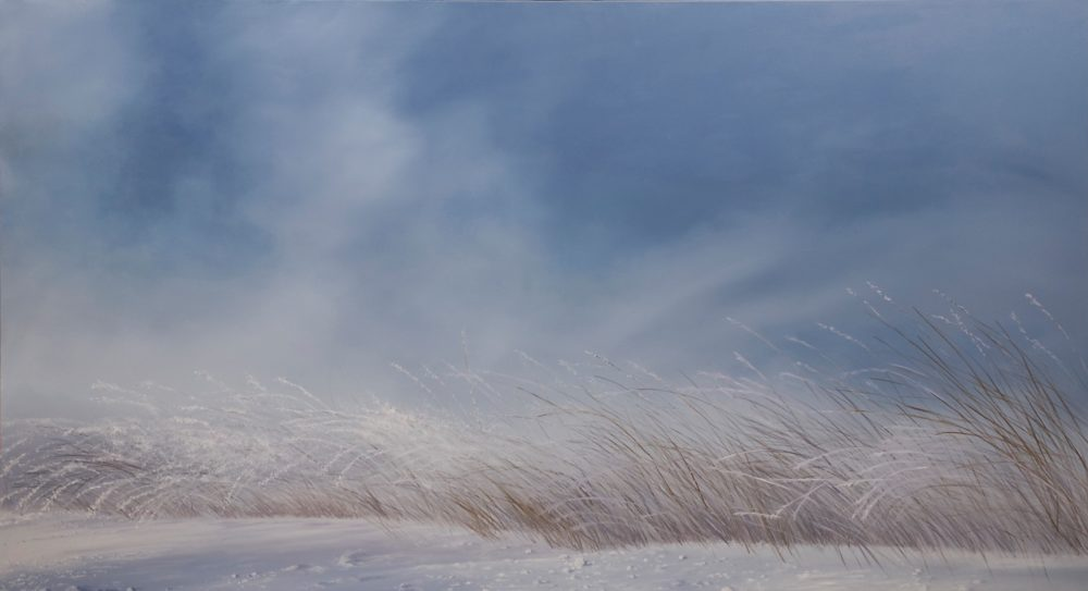 Frosted Remnants of Summer - Peter Fischer