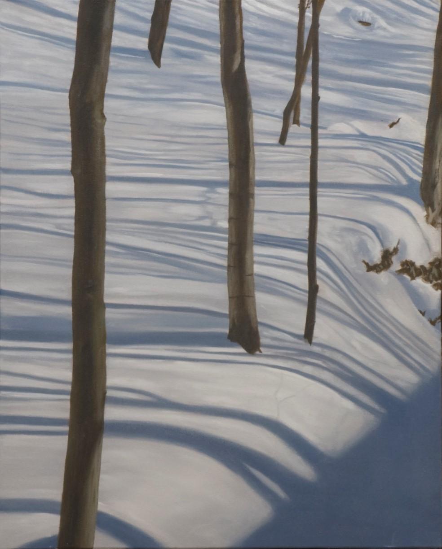 Snowscapes III - Peter Fischer