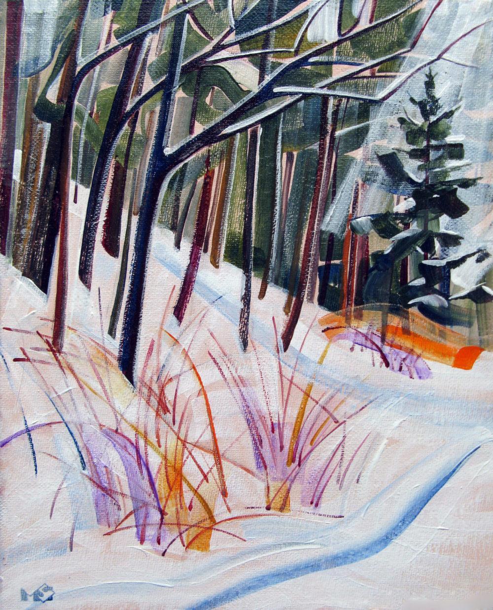 Snowy Fir - Maria Sarkany